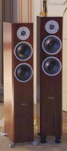DSC00906 (Custom)
