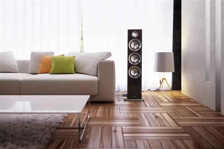 Sofa in Modern Interior design living room