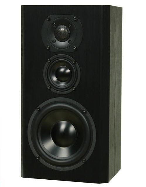Bryston Mini A Loudspeaker (Custom)