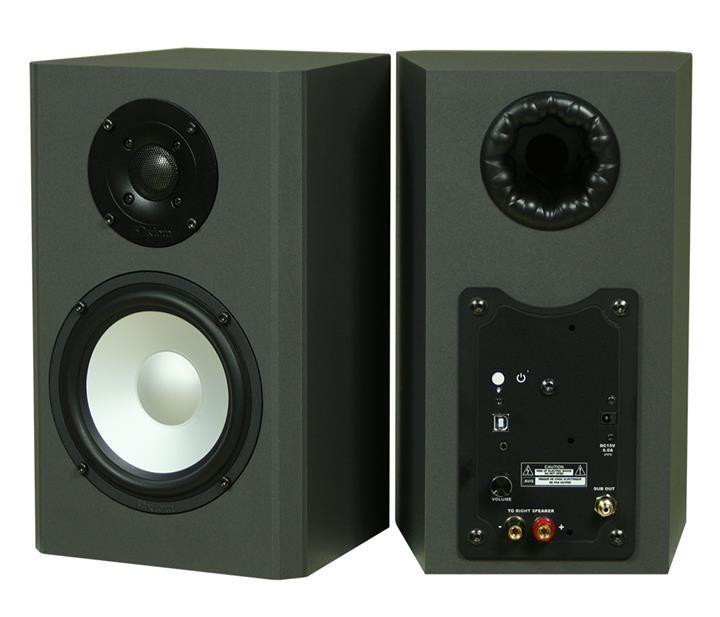Axiom Audio High Power Computer Speakers (Custom)